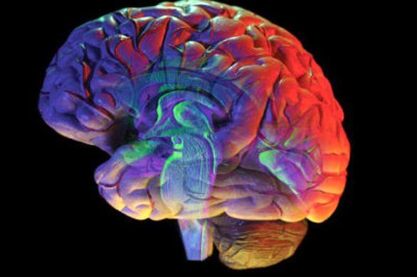 تغییر روند تصمیم گیری مغز امکان پذیر شد