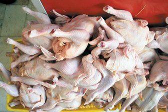 کاهش هزار تومانی نرخ مرغ در بازار