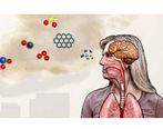 تاثیرات بد و مخرب آلودگی بر روی مغز انسان