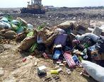 امحاء 10 تن کالای غیر استاندارد و غیر بهداشتی در گلستان