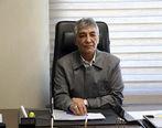 پیام تبریک مدیرعامل شرکت گهرزمین بمناسبت روز جهانی