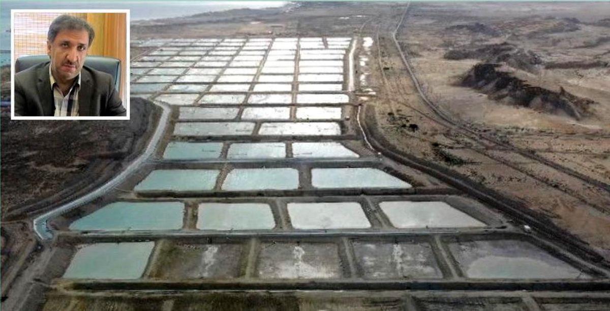 صنایع کشاورزی، دامپروری و شیلات سه گانه های در حال احیای قشم