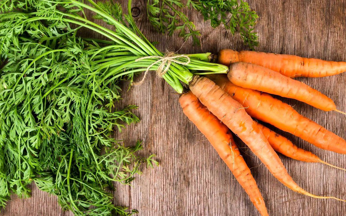 روش صحیح نگهداری هویج برای یک سال