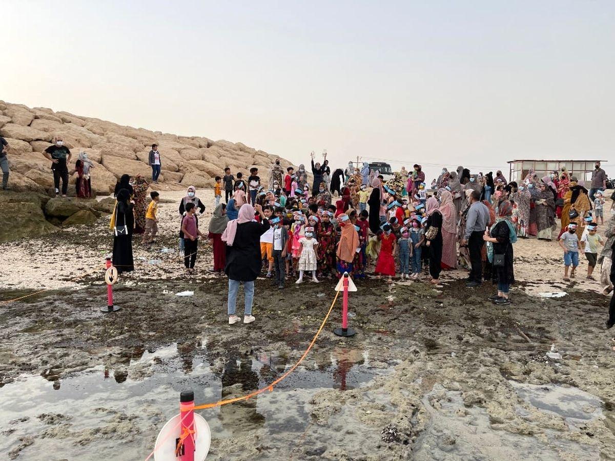 رهاسازی بیش از 100 قطعه دلقک ماهی توسط کودکان جزیره قشم