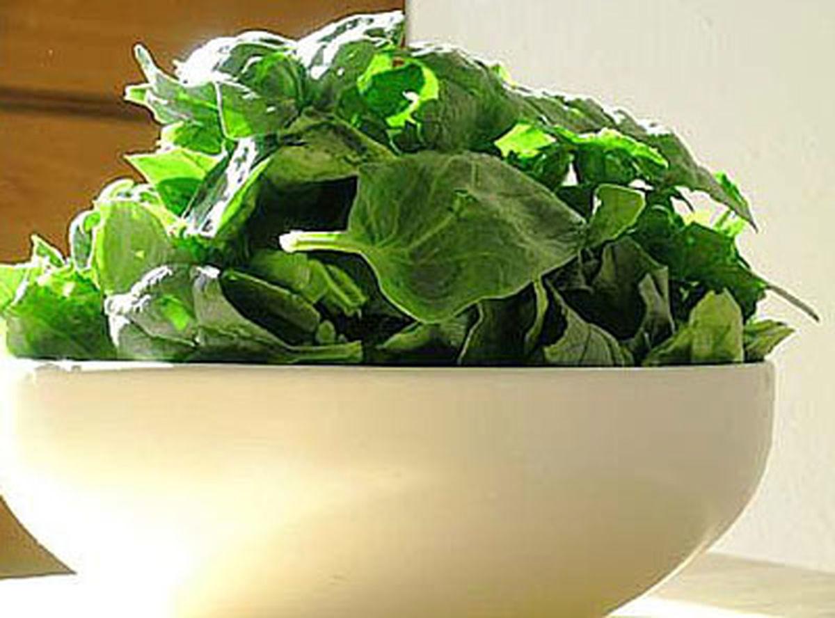 گیاهان عضله ساز را بشناسید