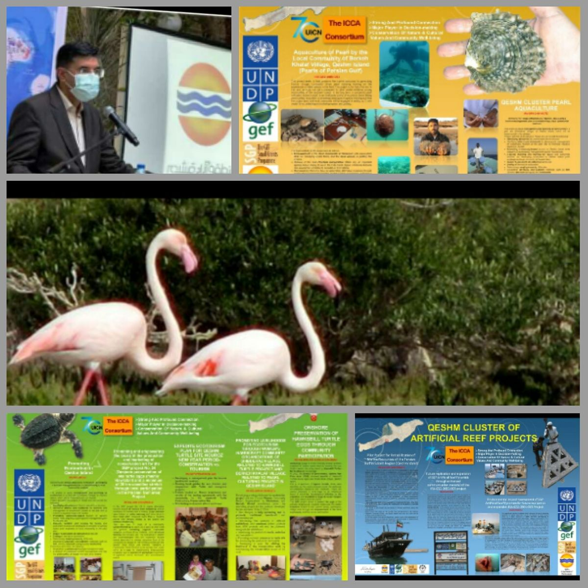 ارتقاء محیط زیست قشم همگام با دستاوردهای بین المللی