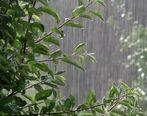 آسمان گیلان بارانی می شود