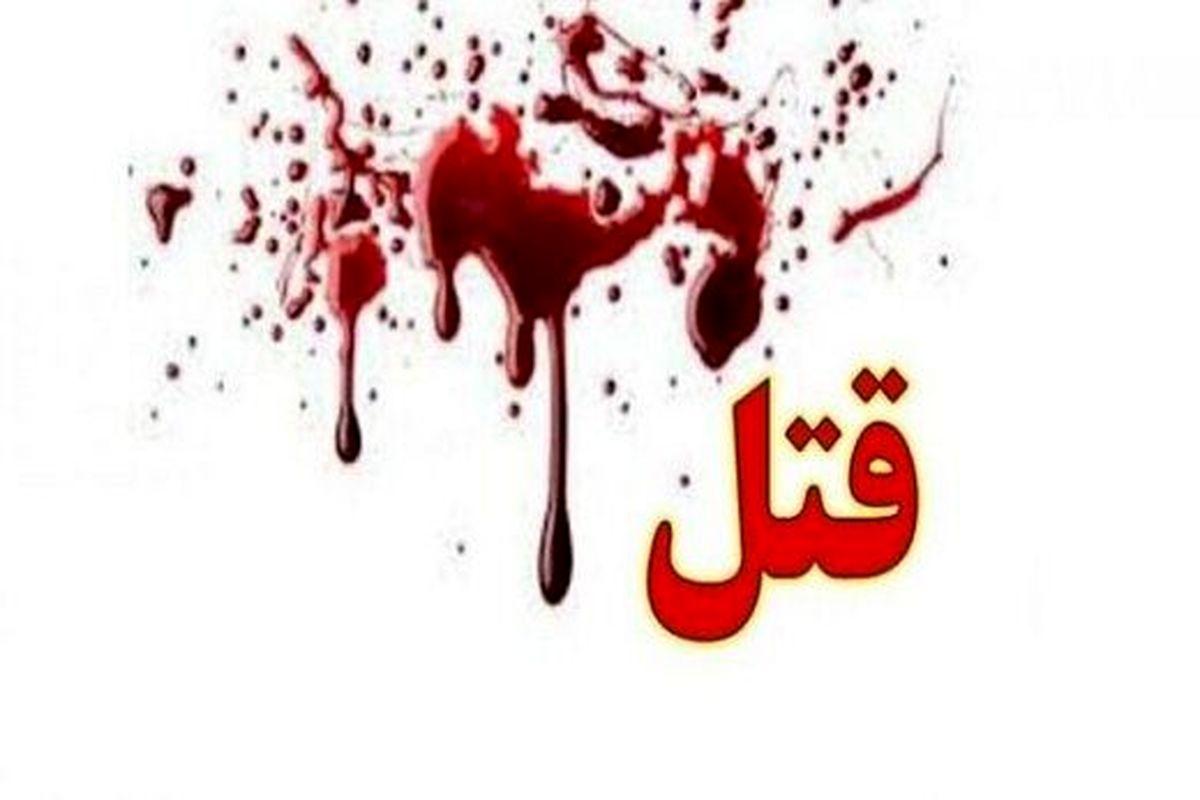 پدر و دختر لبنانی در خیابان پاسداران ناجوانمردانه به قتل رسیدند + جزئیات