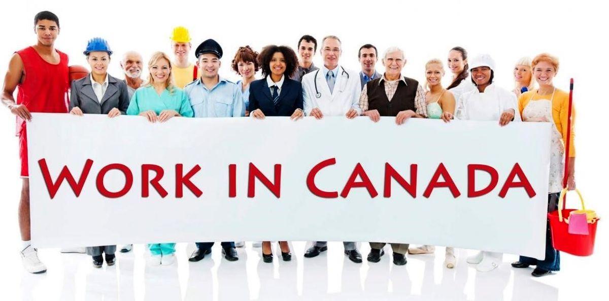 کار در کانادا | با روشهای اخذ ویزای کاری در کانادا آشنا شوید