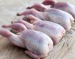 گوشت بلدرچین را در چه فصولی از سال نباید مصرف کرد؟