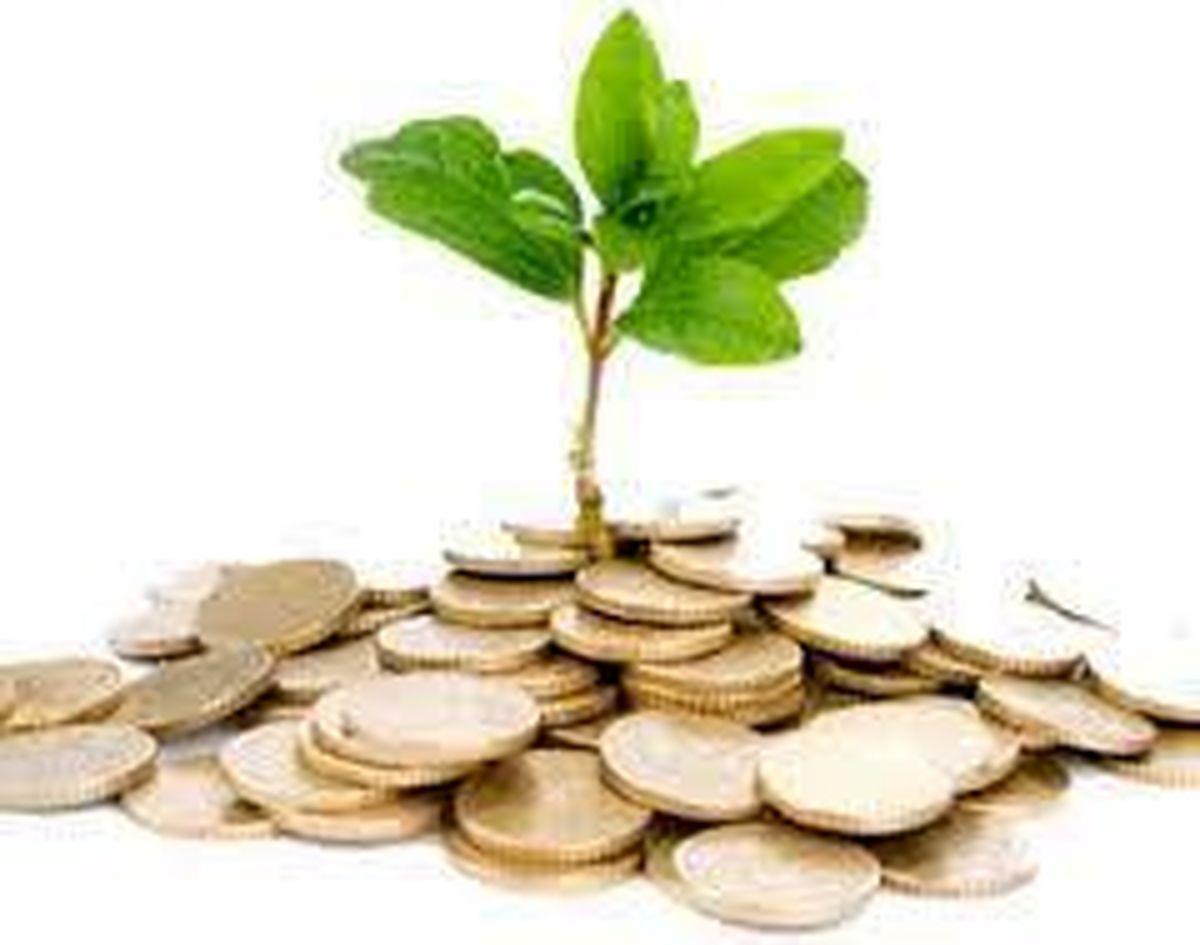 فرهنگ سازی مالیاتی موجب افزایش سطح آگاهی مودیان می شود