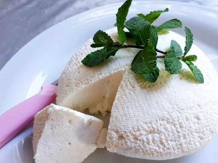 طرز تهیه پنیر خانگی,طرز تهیه پنیر