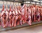 خرید گوشت در بازار نصف شد + جزئیات