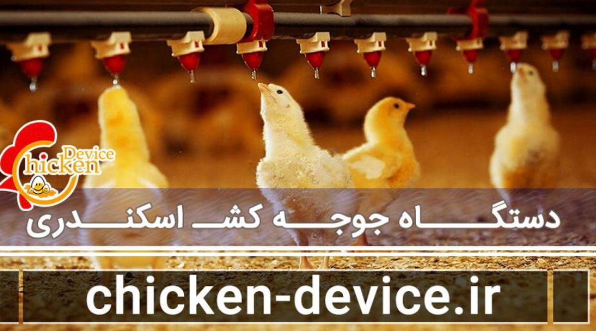 خبر خوش ایران در بین سه تولید کننده برتر دستگاه جوجه کشی در دنیا
