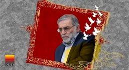 پیام مدیرعامل مجتمع فولاد خراسان درپی شهادت دکتر محسن فخری زاده