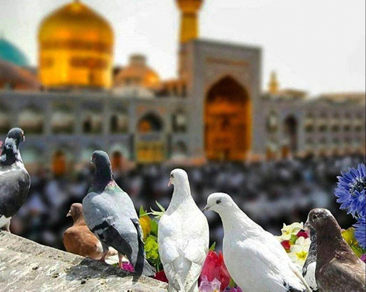 هزینه سفر به مشهد در نوروز را چطور مدیریت کنیم؟