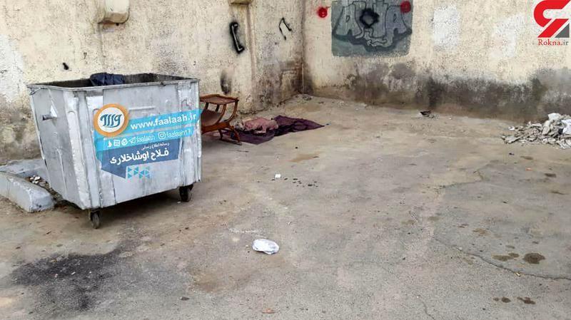عکس تکاندهنده از جنازه یک سگ در تهران + عکس