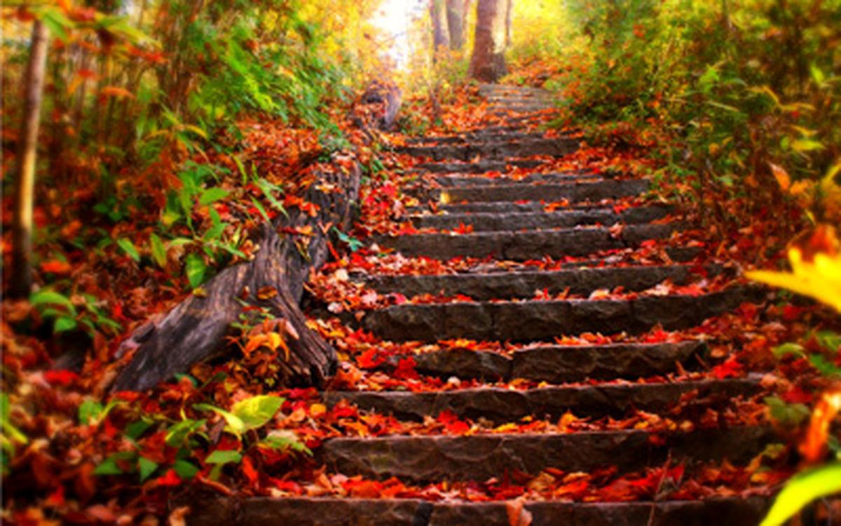 اس ام اس های زیبا مخصوص فصل پاییز + متن های زیبا