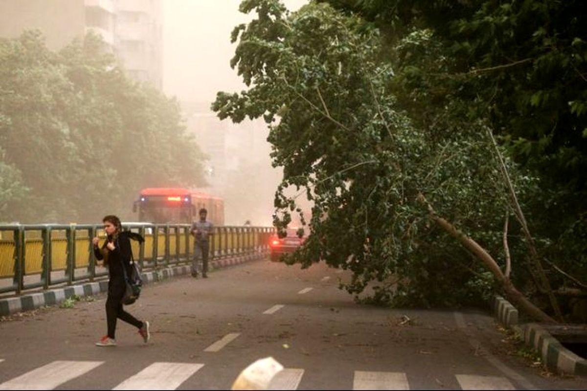 وزش باد شدید در ۱۱ استان کشور