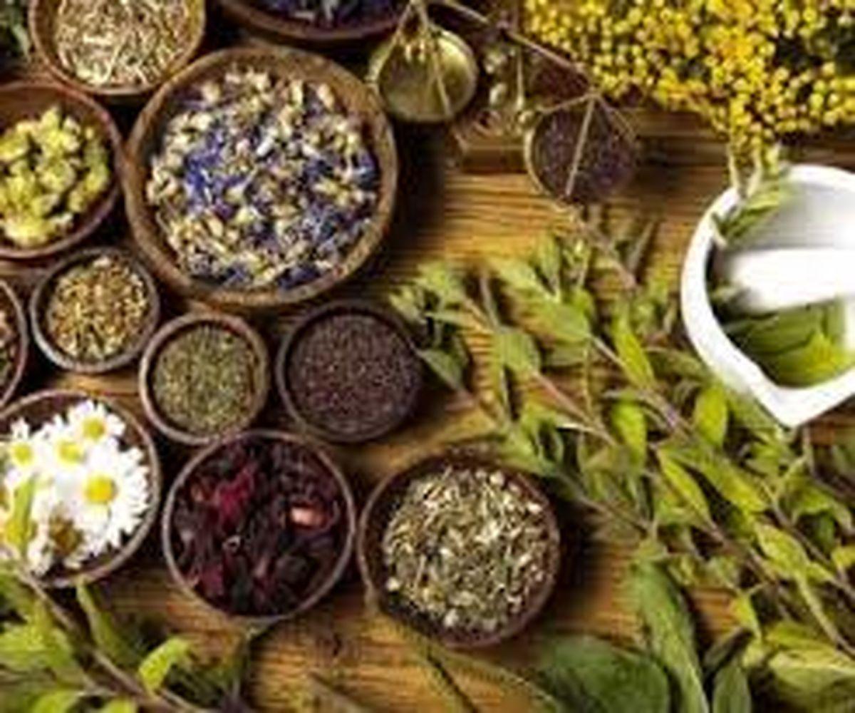 با کدام داروهای گیاهی به جنگ با کرونا برویم؟