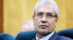 سخنگوی دولت به قتل رومینا اشرفی واکنش نشان داد