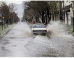 جزئیات وقوع سیلاب در استان بوشهر