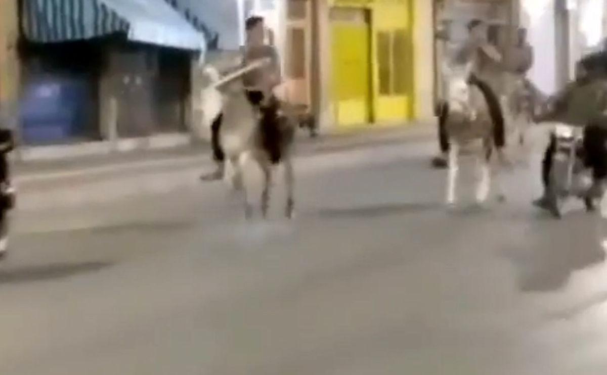 مجازات سنگین برای الاغ سواران شیرازی! + ویدئو