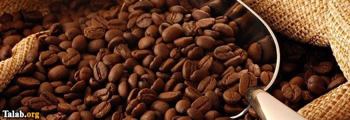 10 خواص فوق درمانی بسیار مفید در گیاه کافئین