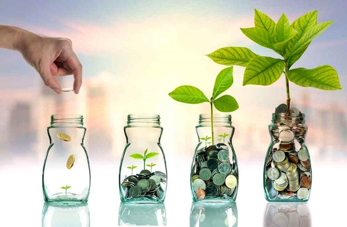 صندوق سرمایهگذاری خصوصی ، مدلی بکر و مغفول مانده
