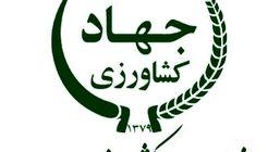 درخواست فروش 37 شهرک کشاورزی نیمه تمام دولتی توسط وزارت جهاد کشاورزی