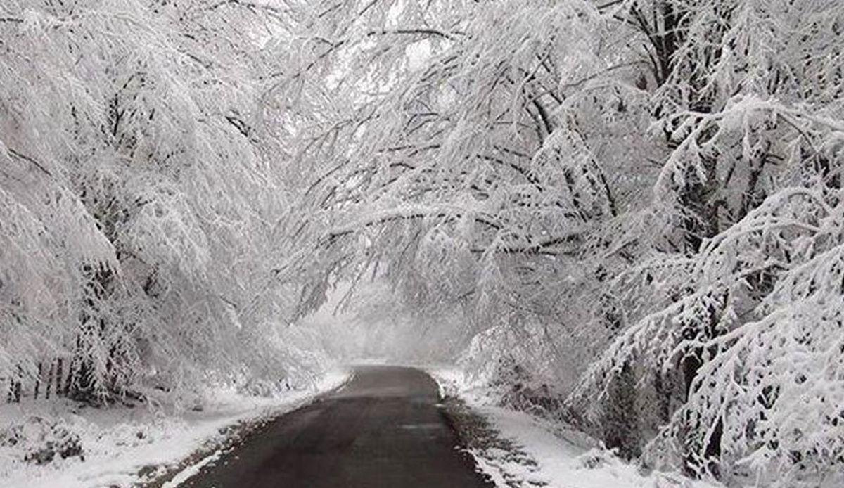 ۱۵ استان دچار تگرگ برف و باران میشوند