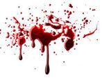 ماجرای خیانت عروس 22ساله در مرگ فجیع تازه داماد
