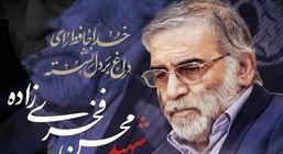 واکنشهای کشورهای خارجی در محکومیت ترور شهید فخریزاده